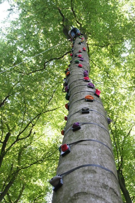 TREE-CLIMBING INSTALLATION - VERTICAL GREEN s.n.c